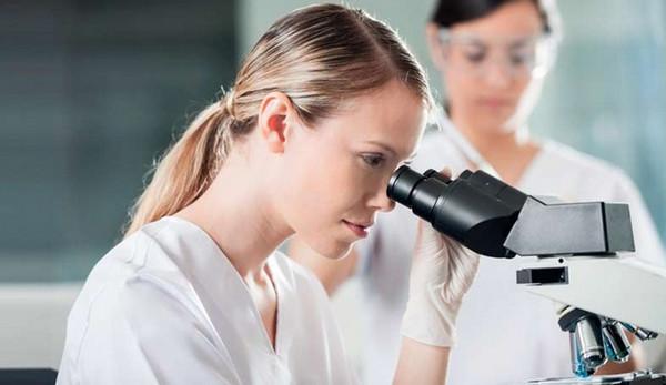 Биопсия желудка: расшифровка результатов, гистология