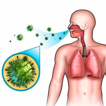 Вирусная пневмония у взрослых: симптомы и лечение, признаки