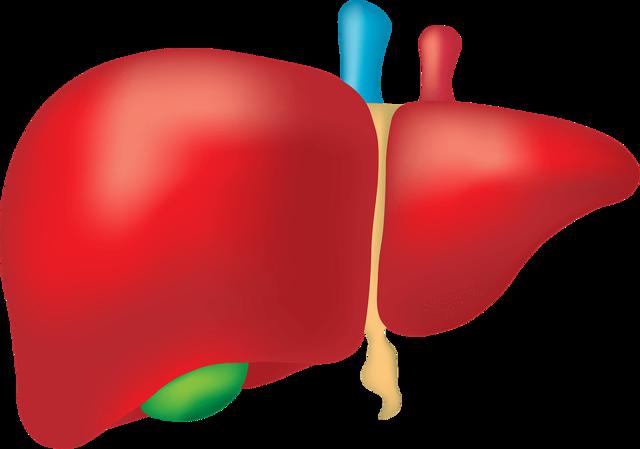 Обтурационная желтуха: патогенез, что это такое, причины. лечение