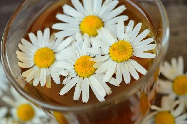 Настойка Ромашки: инструкция по применению, на спирту