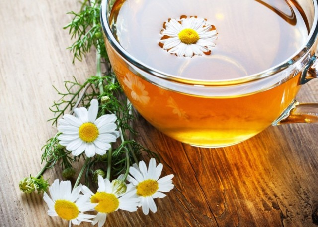 Ромашковый чай: польза и вред для женщин, с ромашкой