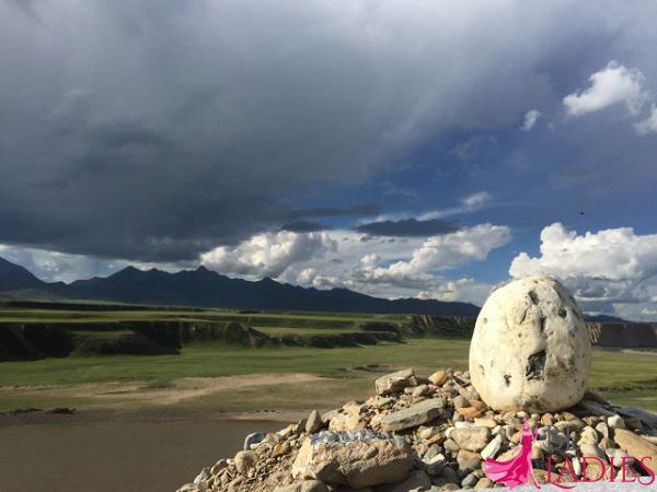 Тибетский сбор из 4 трав: для похудения, очищения организма
