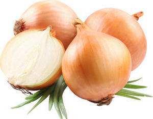 Как приготовить отвар из луковой шелухи: применение, при болезнях
