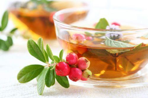 Мочегонный чай от отеков: в аптеке, хороший, травы