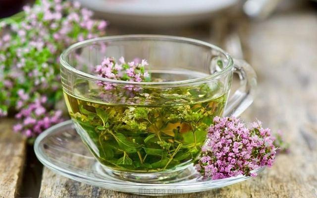 Чай с чабрецом: польза и вред, мята, полезные свойства