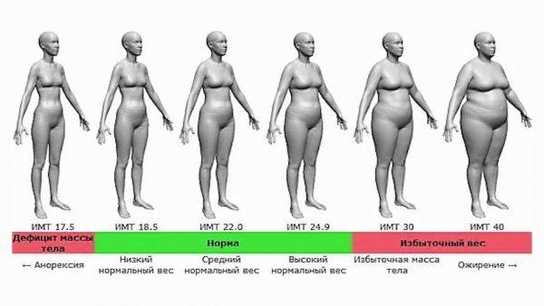 Ожирение 3 степени: лечение, как лечить у женщин