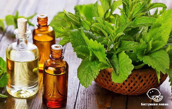 Чай с мятой: польза и вред, противопоказания, показания