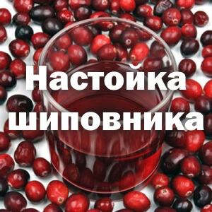 Настойка Шиповника: польза и вред, на водке, полезные свойства