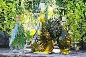 Полынь Горькая: лечебные свойства и противопоказания, настойка