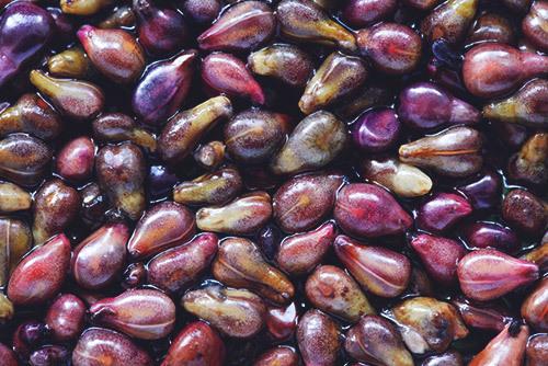 Экстракт виноградных косточек: инструкция по применению, в капсулах