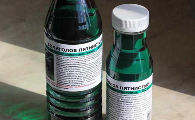 Настойка болиголова: применение, побочное действие на организм