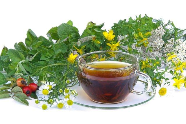 Почечный чай: полезные свойства и противопоказания