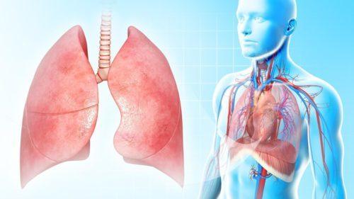 Полисегментарная пневмония у взрослых: двусторонняя, левосторонняя