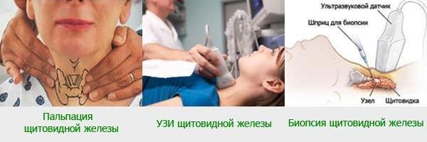 Узлы в щитовидной железе: симптомы и последствия, чем опасны