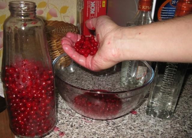 Настойка из калины: на водке, полезные свойства, рецепт