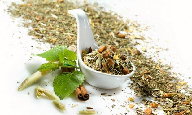 Зеленый чай с мелиссой: полезные свойства, чем полезен