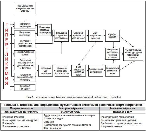 Сенсорная нейропатия: автономная, нейропатия, лечение