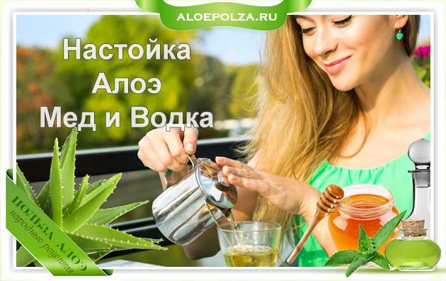 Настойка Алоэ: с медом и водкой, рецепт, как приготовить