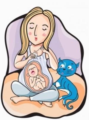 Чесотка при беременности: у беременных, причины и лечение
